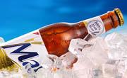 啤酒产品bwin足球APP下载