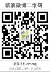 勒蒙bwin足球APP下载新浪微博